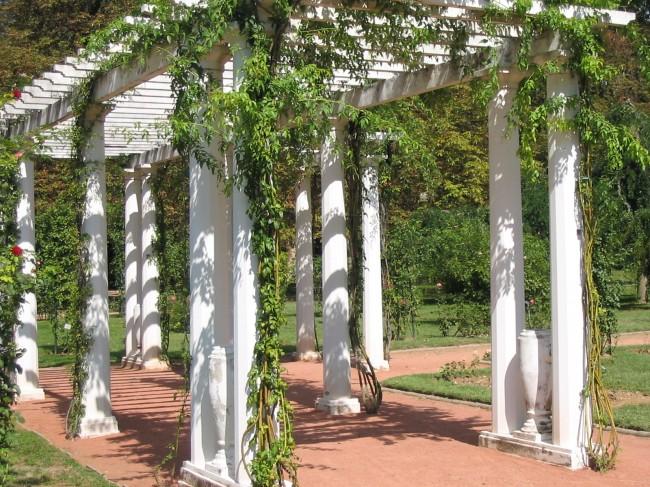 Exemple de pergola autoportée décorée de plantes.