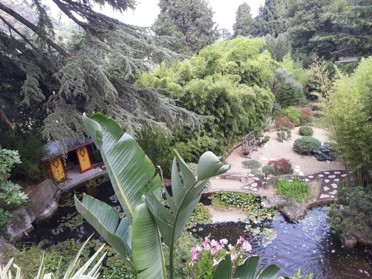 Maison : comment faire un jardin japonais ?